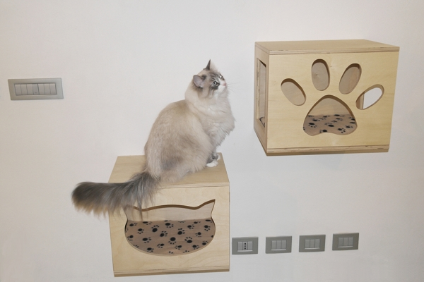 cubi per creare parete attrezzate per gatti