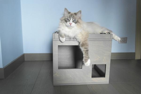 Cuccia in legno di colore grigio per gatti