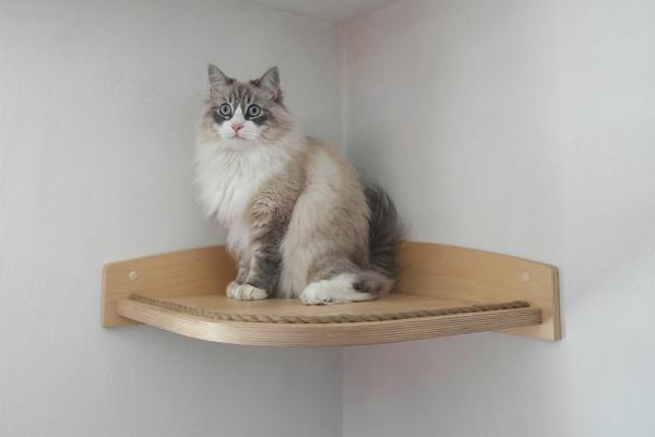 mensola per gatti modello angolare